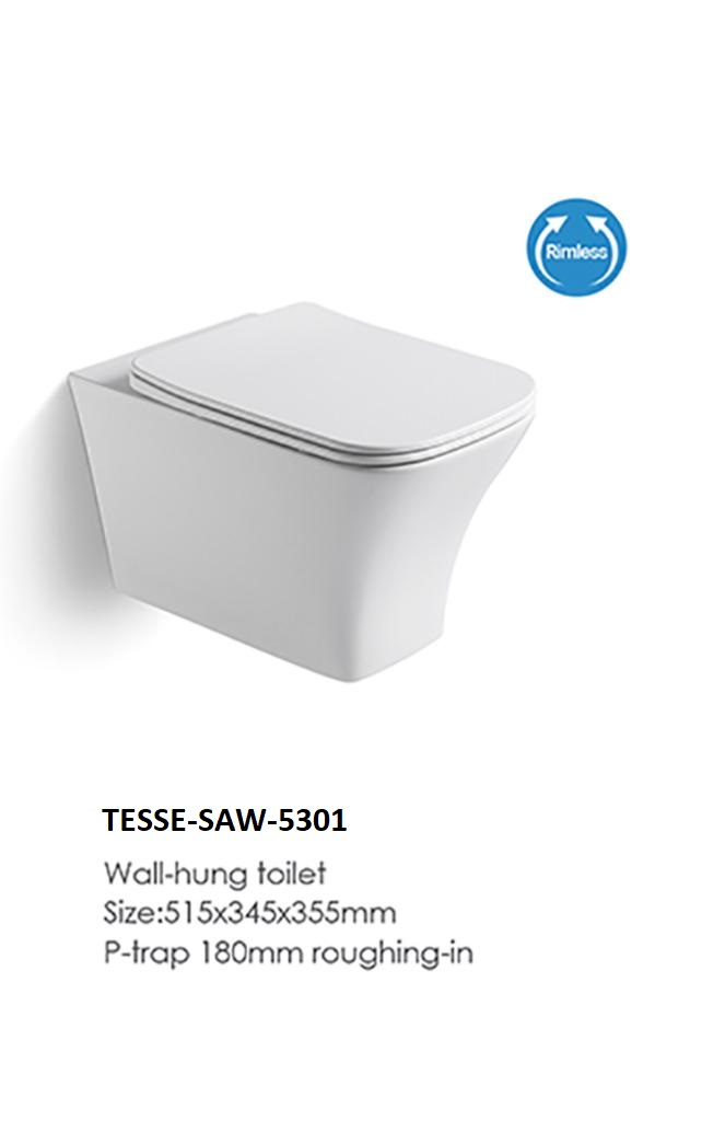 TESSE-SAW-5301