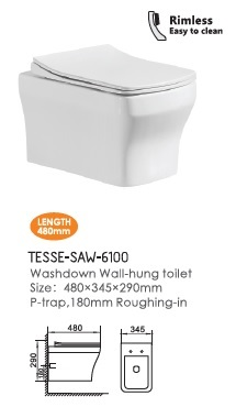 TESSE-SAW-6100